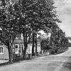 Brächen - im Hintergrund die Pension Eichen-Hof von Eugenie Dannenberg